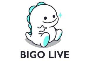 bigo_01